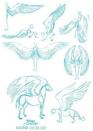 25 trending how to draw wings ideas on pinterest wing anatomy