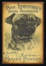 bichon frise z hter hessen vintage pug art vintage pug cards lovingly embellished m5x