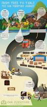 from tree to table the oak furniture journey infographic oak