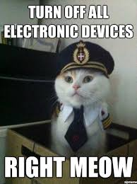 Get Off The Phone Meme - turn off all electronic devices right meow funny humor