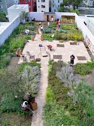 rooftop garden design vegetable garden design layout small yard simple concept house and