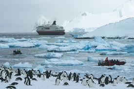 imagenes de la antartida noticias en panorama denuncian que en la antártida se hacen