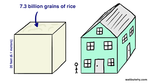 how big is a square foot 100 how big is 25 square meters average kitchen size facts