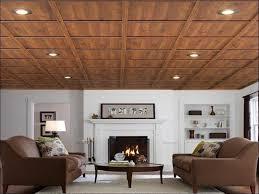 drop ceiling ideas basement home design ideas top with drop