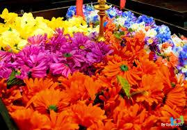 Kentucky Derby Flowers - kentucky derby event decor for bally u0027s las vegas by dzign event