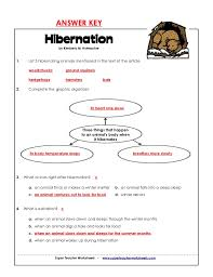 hibernation worksheets free worksheets library download and