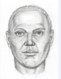 police look for kidnapping suspect
