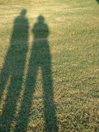 easy shadow experiments and activities for kids wehavekids