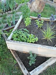Beginners How To Grow Just by How To Grow An Herb Garden Little House Living