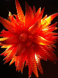 Red Chandelier by Chihuly Red Chandelier Little Things I Love