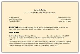 Resume Mission Statement Objective Resume Examples Entry Level Resume Objective Examples