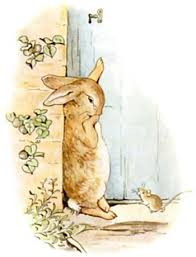 rabbit by beatrix potter beatrix potter images rabbit wallpaper and background photos