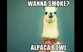 Super Bowl Weed Meme - dope puns 10 awesome weed puns