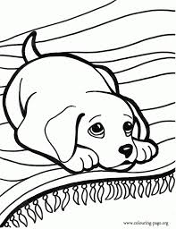 the brilliant along with attractive puppy dog coloring pages