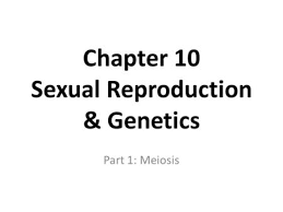 meiosis directed reading ppt video online download