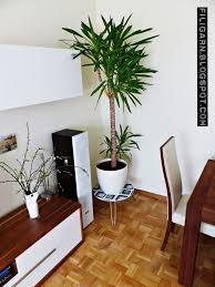Wohnzimmer Beleuchtung Bilder Licht Deko Wohnzimmer Schon Moderne Attraktiv Beleuchtung Planen