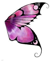 butterfly wing designs search patterns and designs