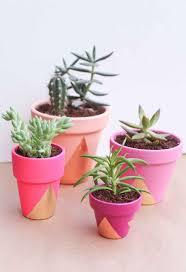 Cute Succulent Planters simple diy ways to customize terracotta pots