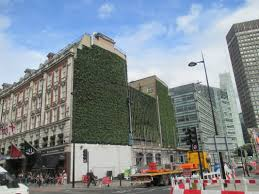 green walls are essentially a living cladding system