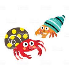 colorful hermit crab animal cartoon character vector illustration
