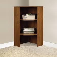 prepossessing shelves for closets bathroom roselawnlutheran