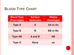 blood types genotypes chart real fitness