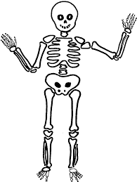 comment faire un maquillage de squelette comment dessiner un squelette santé et bien être pinterest