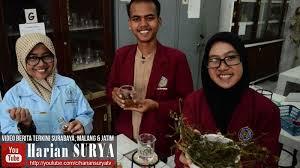 Obat Tidur Di Surabaya sering susah tidur coba resep daun putri malu oleh mahasiswa