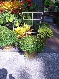 Small Trellis Planter Garden Metalwork Long Lasting Trellis