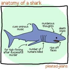 shark week yup this definitely explains my irrational fear of