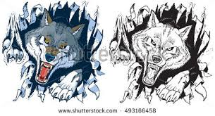 wolf stock images royalty free images u0026 vectors shutterstock