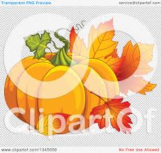 pumpkin no background clipart of a plump festive pumpkin with autumn leaves royalty