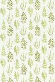 angel ferns olive 221928 sanderson fabrics a pretty