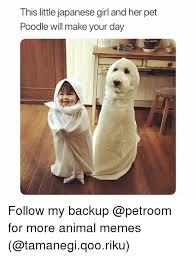 Funny Memes To Make - this little japanese girl and her pet poodle will make your day
