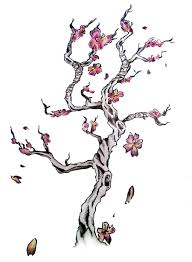 cherry blossom branch tattoo designs symbolism of cherry blossom