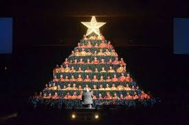 singing christmas tree hobe sound bible church singing christmas tree