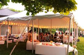Wedding In The Backyard Backyard Bbq Ideas With The Decoration Handbagzone Bedroom Ideas
