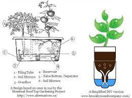 diy self watering herb garden cheerful self watering pots amazing design why we love self watering