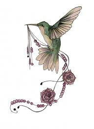 found on google from pinterest co uk hummingbirds pinterest