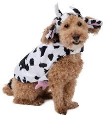 Halloween Costume Free Dog Halloween Costume Xxl Dog Halloween Listia