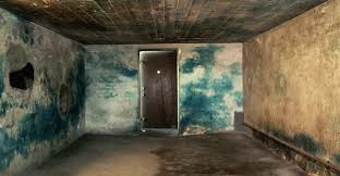 th e chambre b gas chamber at majdanek holocaust concentration cs pictures