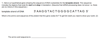 here is a hypothetical gene showing the sequence o chegg com