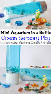 mini aquarium in a bottle ocean sensory play to learn and explore