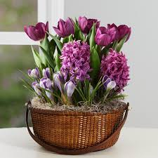 potted flowers potted flowers handicraft landscaping backyards ideas the