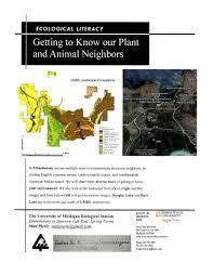 plants native to michigan eco girls u2014 michigan plants and animals