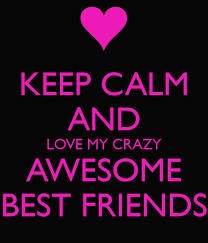 friends are awesome sometimes you can t live without them