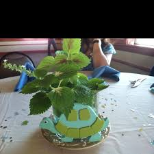 turtle baby shower decorations turtle baby shower ideas babywiseguides