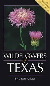 native plants of china wildflowers of texas geyata ajilvsgi 9780940672734 amazon com