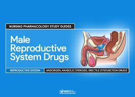male reproductive system drugs u2013 nursing pharmacology guide