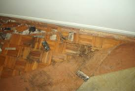 awesome 20 mold in bathroom carpet decorating inspiration of